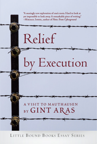 relief by execution aras