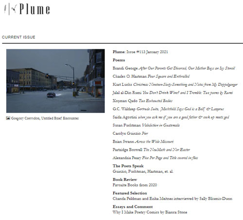 plume issue 113
